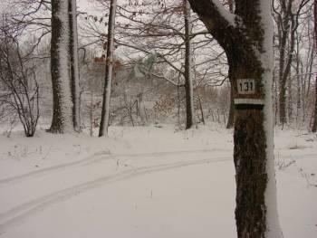 Зима в Странджа
