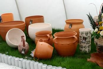 Флора Бургас 2009