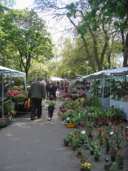 Бургас, ФЛОРА 2009