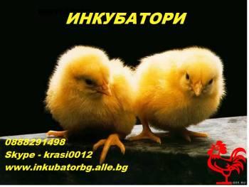 Инкубатори за люпене на яйца