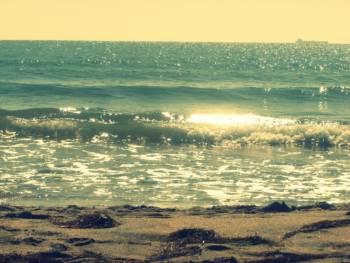 Море,земя, въздух